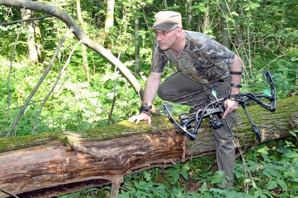 Охотничьи луки Хойт Арчери