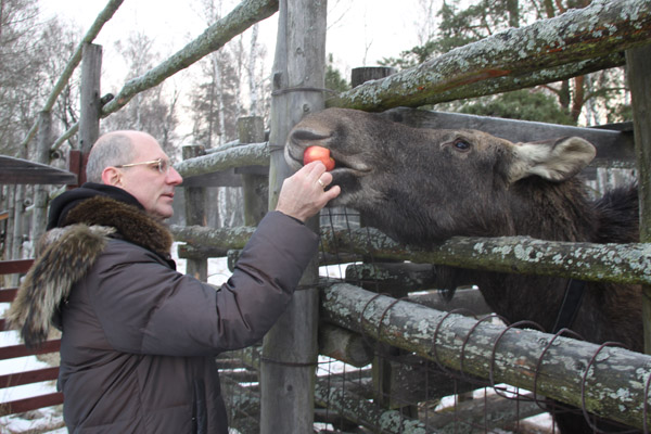 Погладить лося и покормить оленей: Лосиная биостанция в Лосином острове