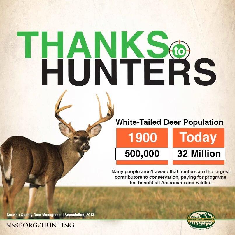 Охота на оленя в Америке
