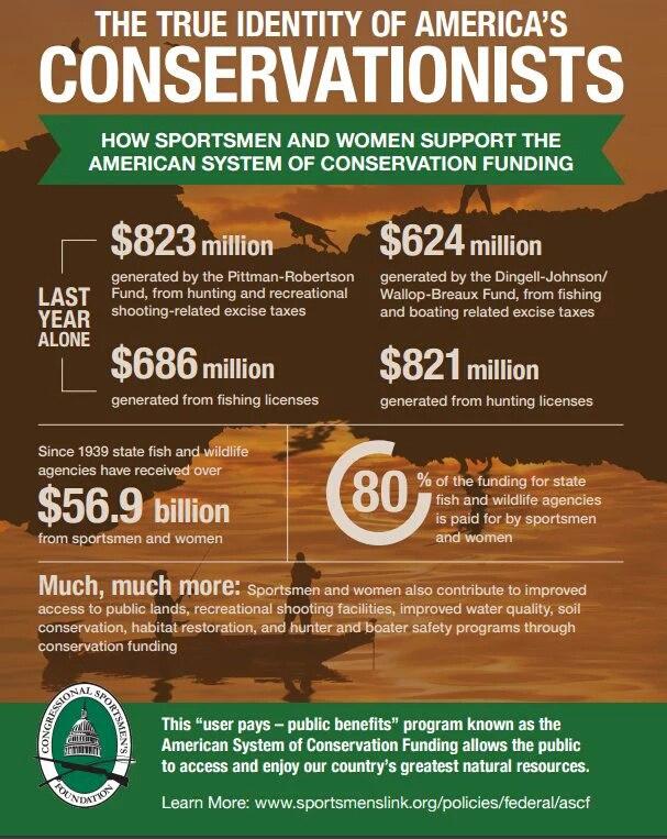 Затраты в америке на восстановление численности поголовья за счет налогов и сборов с охотников