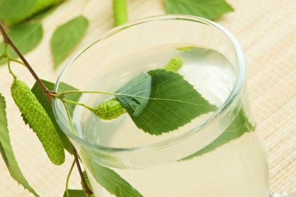 Когда и как собирать березовый сок: Польза березового сока и лечение березовым соком