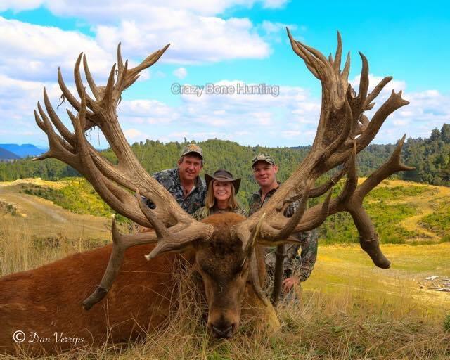 Мировой Рекорд - Олень с суммой баллов 751 добыт в Новой Зеландии: О продаже рекордов и об Охотничьем Хозяйстве
