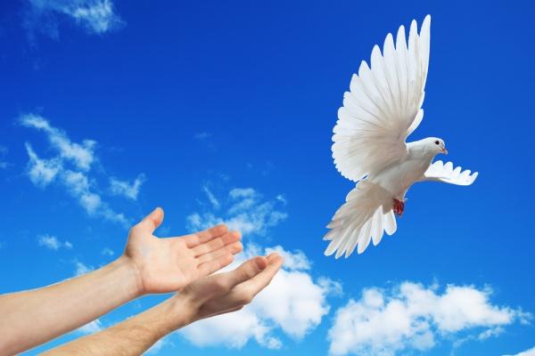 Благовещение Пресвятой Богордицы, Благовещенье, 7 апреля Благовещение, традиции на Благовещенье, приметы на Благовещенье