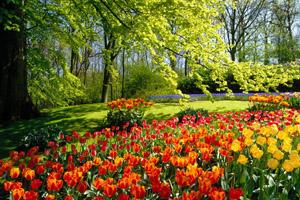 Московские парки, фестиваль ворвись в весну, весна в московских парках,