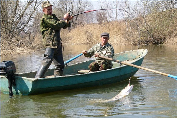 платная рыбалка воздвиженское контакты