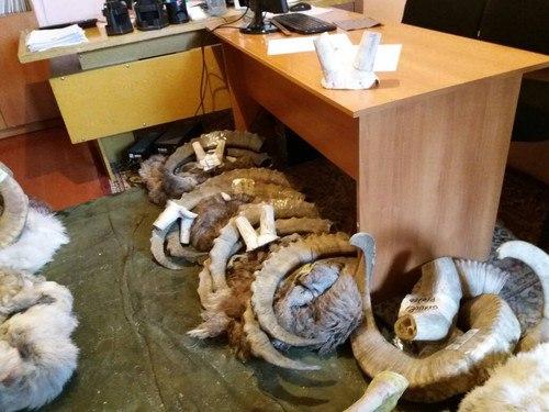 Профи-хант Мельников браконьеры