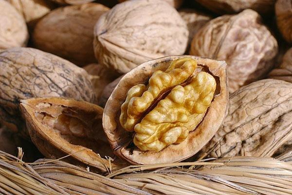 Грецкий орех, прибыток грецких орехов, свойства грецкого ореха, чем полезен грецкий орех, смазка грецкого ореха, как бы сберегать грецкие орехи, на правах прилагать грецкие орехи, прибыль грецкого ореха, в духе найти грецкие орехи