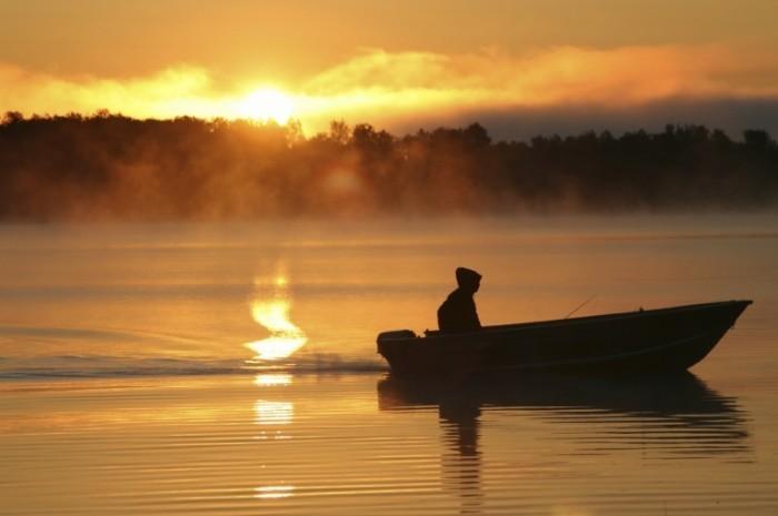 Что касается хищника, то вблизи берега можно ловить окуня. Лучше всего он берет яркие или серебристые блесны, которые хорошо видны в воде. Ловится окунь и другая хищная рыба на спиннинги легкого и ультралегкого класса. Излюбленные места обитания хищников – Москва-река, Ока и крупные водохранилища, но и малыми реками пренебрегать не стоит. Советую попробовать порыбачить на хищника на Шерне, Воре, Наре, Пехорке