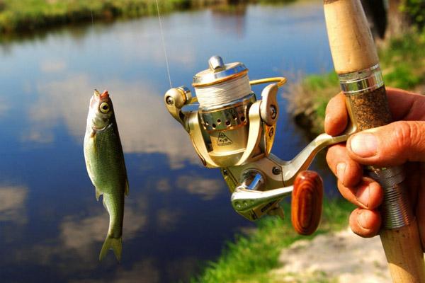 Скачать Игру Рыбалка На Русском Языке - фото 4