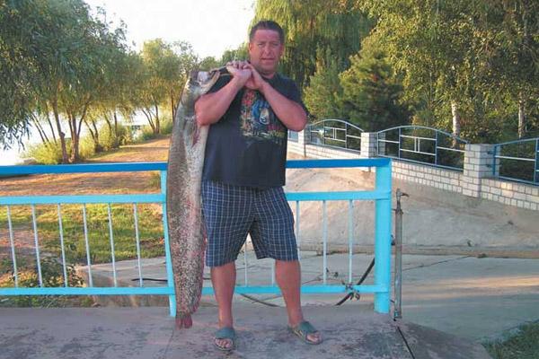 видео про рыбалку в волгограде