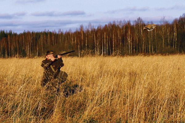 Охота на куропатку, ружье для охоты на куропатку, патроны для охоты на куропатку, стрельба по куропаткам, охота на куропаток, охота на серую куропатку, охота на куропаток с собакой, стрельба куропаток