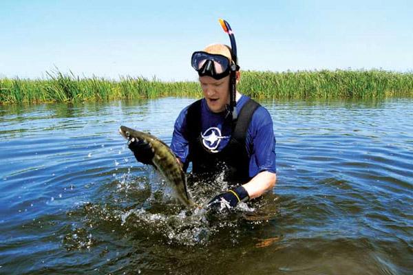 Подводная охота, астраханская рыбалка, подводная охота в дельте Волги, снаряжение для подводной охоты, подводный охотник, подводная охота на Волге, Снаряжение для подводной охоты в дельте Волги, лучшее время для подводной охоты в дельте Волги