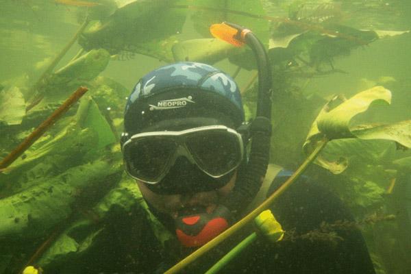 Подводная охота в днепропетровске