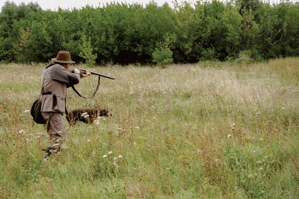 охота в испании