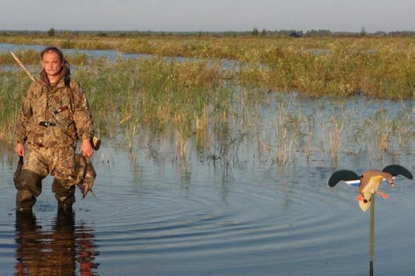 Осенняя охота 2017, осенняя охота 2017 в Нижегородской области, открытие осенней охоты 2017 в Нижегородской области, сроки осенней охоты 2017 в Нижегородской области