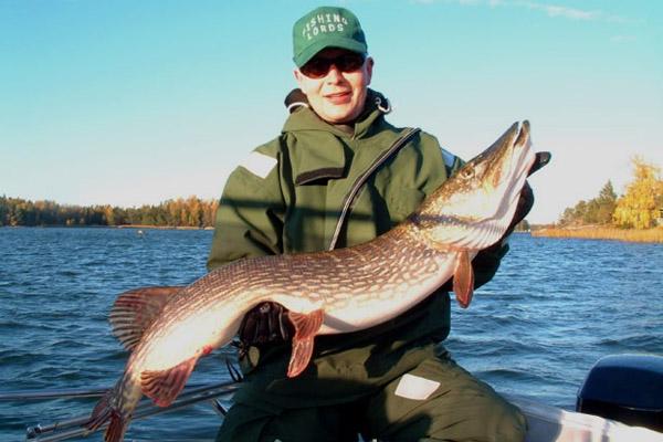 Щук как поймать щуку осенью рыбалка