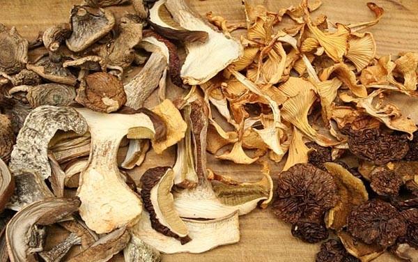 Как сушить грибы, какие грибы сушить, как сушить грибы в домашних условиях, как сушить грибы на солнце, как сушить грибы в духовке, как хранить сухие грибы