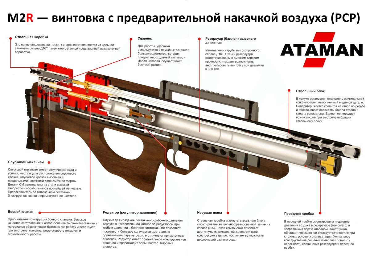С пневматикой на охоту оружие