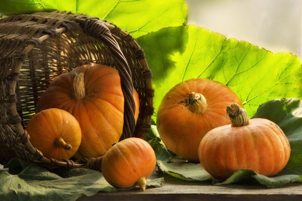 Полезные свойства тыквы, польза тыквы, полезные свойства тыквенных семечек, полезные свойства тыквенного сока, тыква для похудения, тыквенная диета, вред тыквы, как выбрать тыкву, как хранить тыкву, рецепты из тыквы, что приготовить из тыквы, тыква запеченная в духовке