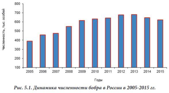 Численность бобра в России 2005-2015