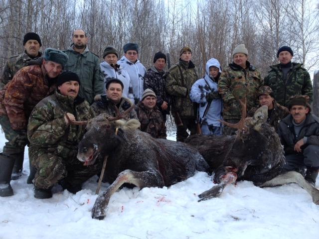 В 5 раз выросла площадь охотугодий Воронежской области с ноября 2017 года