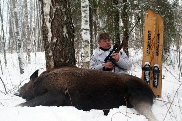 Охота в Московской области, охота на лося в Подмосковье, охота на барсука в Подмосковье, охота на оленя в Московской области, охота на лося в Москвоской области