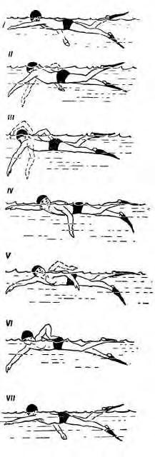 Подводная охота, подводное плавание, обучение подводной охоте, положение тела пловца