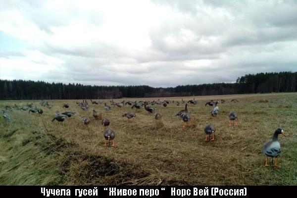 Весенняя охота на гусей - скачать бесплатно