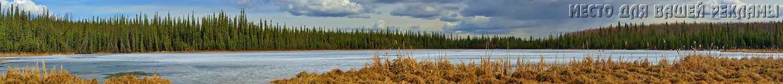 осенняя и зимняя охота 2016, сроки осенней и зимней охоты 2016, открытие осенней и зимней охоты 2015-2016