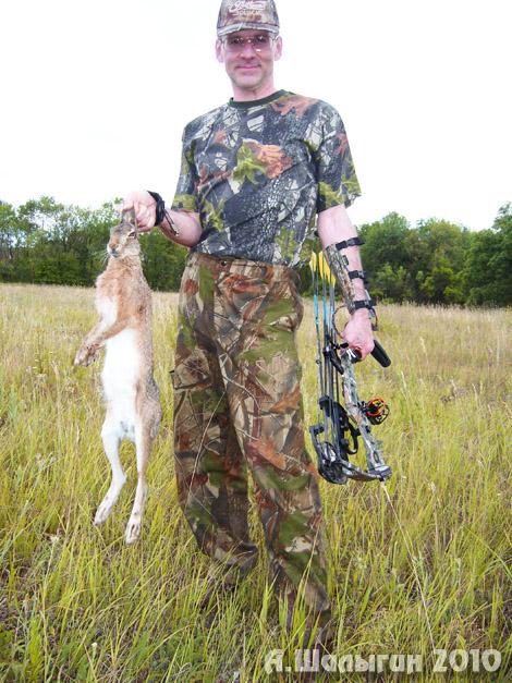 Собака на охоте с луком и арбалетом
