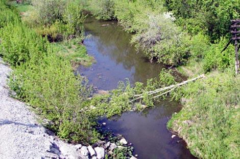 река алапаиха рыбалка