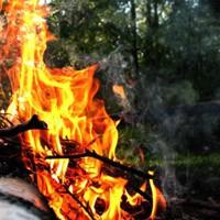 Пожар, весенняя охота, пожар в лесу, штрафы за костер в лесу, штраф за поджег травы, пожар в лесу, штрафы за разведение костров на природе, штраф за костер, где можно разводить костры, правила пожарной безопасности в лесах, противопожарный режим, Нарушение правил пожарной безопасности в лесах, травяные палы, штрафы за поджег мусора