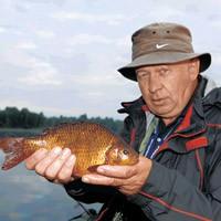 как сделать жерлицу для летней рыбалки