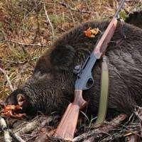 Открытие сезона охоты в Вологодской области
