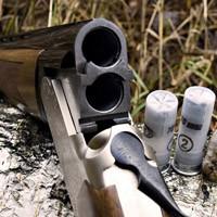 Правила оборота гражданского оружия Планируемые изменения