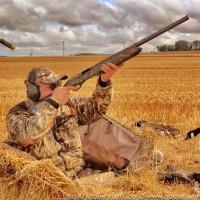 Охота на гуся с профилями — Охота, Рыбалка, Природа, Оружие
