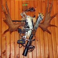 Оружие для результативной охоты тому же, такие