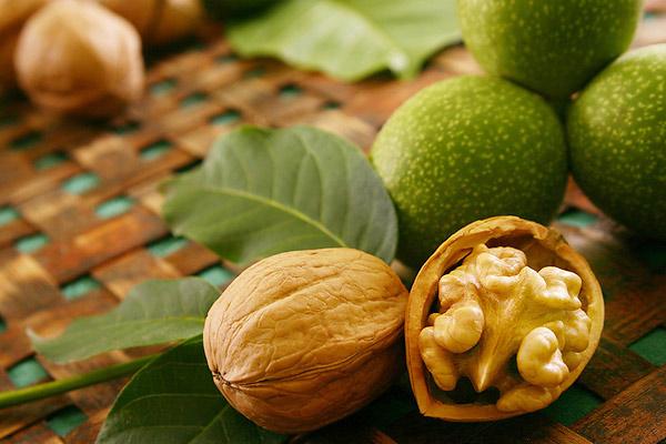Грецкий орех, польза грецких орехов, свойства грецкого ореха, чем полезен грецкий орех, масло грецкого ореха, как хранить грецкие орехи, как употреблять грецкие орехи, польза грецкого ореха, как выбрать грецкие орехи