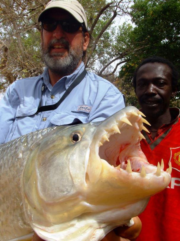 Рыбалка в Гамбии на речного тигра, речные монстры Гамбии, рыбалка в Африке
